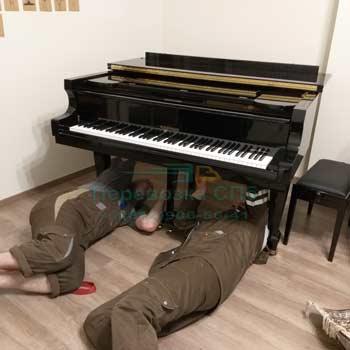 Перевезти рояль по Санкт-Петербургу с грузчиками